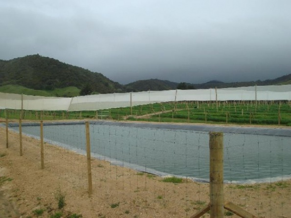 fire-frost-irrigation-ponds-004