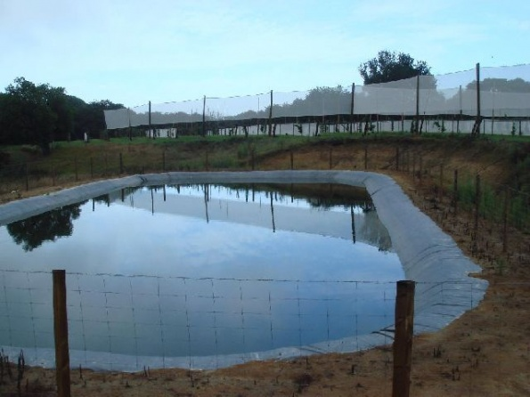 fire-frost-irrigation-ponds-019