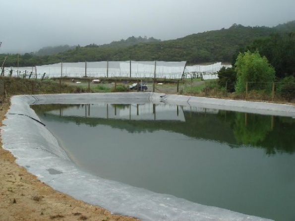 fire-frost-irrigation-ponds-021