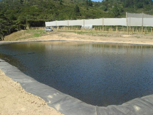 fire-frost-irrigation-ponds-023